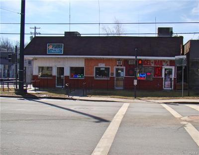 Monticello Commercial For Sale: 485 Broadway
