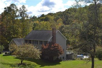 Dutchess County Multi Family 2-4 For Sale: 124 South Harmony Hill Road