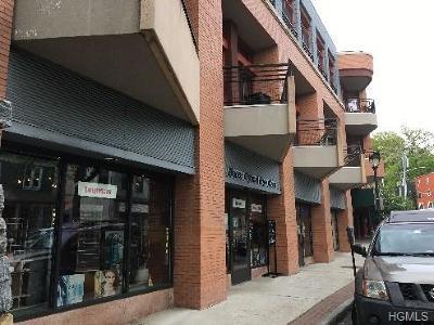 Hastings-On-Hudson Commercial For Sale: 45 Main Street #B