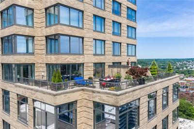 White Plains Condo/Townhouse For Sale: 10 City Place #23A