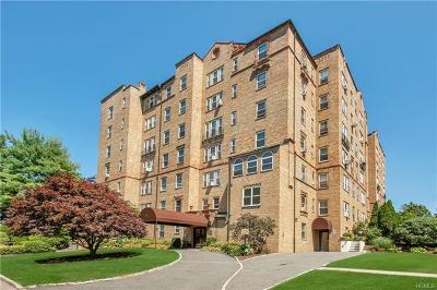 Mamaroneck Condo/Townhouse For Sale: 490 Bleeker Avenue #4E