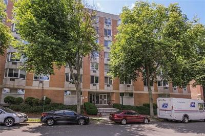 White Plains Rental For Rent: 14 Nosband Avenue #5F
