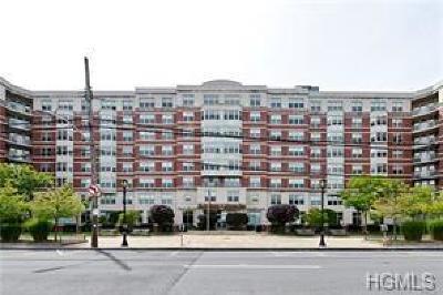 White Plains NY Rental For Rent: $3,200