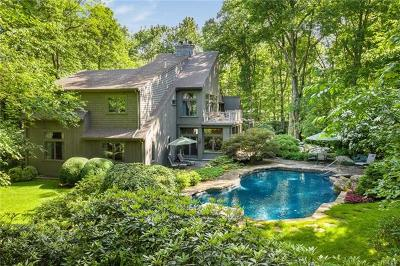 Westchester County Single Family Home For Sale: 17 Eastwoods Road