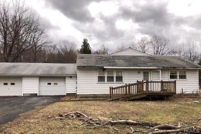 Washingtonville Single Family Home For Sale: 7 Perry Creek Road