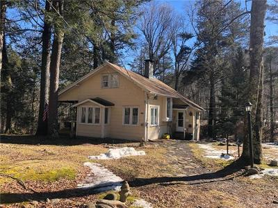 Phoenicia Single Family Home For Sale: 1397 Woodland Valley