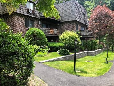 Ossining Condo/Townhouse For Sale: 5 Briarcliff Drive South #53
