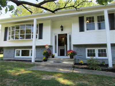 Washingtonville Single Family Home For Sale: 18 Billy Avenue