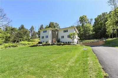 Dutchess County Single Family Home For Sale: 510 Van Wyck Lake Road