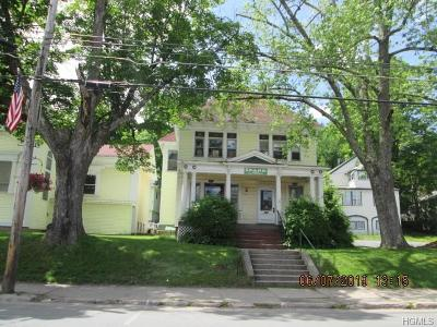 Liberty Single Family Home For Sale: 172 North Main Street
