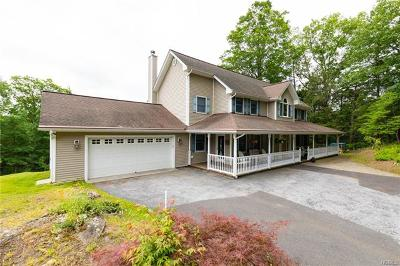 Dover Plains Single Family Home For Sale: 74 Glen Avenue