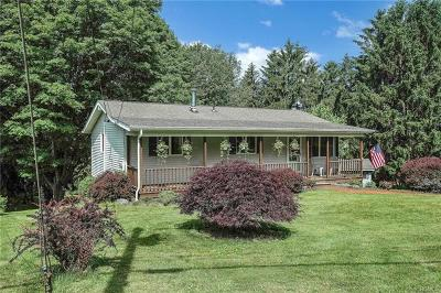 Dutchess County Rental For Rent: 72 Beaver Road