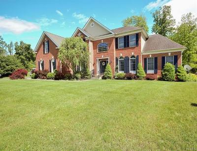 Wappingers Falls Single Family Home For Sale: 26 Neds Way
