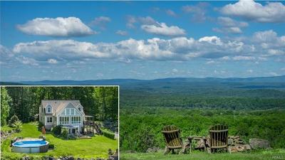 Orange County, Sullivan County, Ulster County Single Family Home For Sale: 120 Soper Road