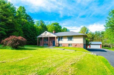 Glen Spey NY Single Family Home For Sale: $249,900