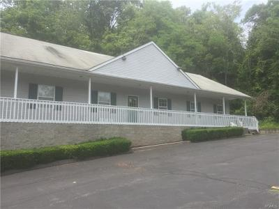 Newburgh Commercial For Sale: 5177 Rt 9w