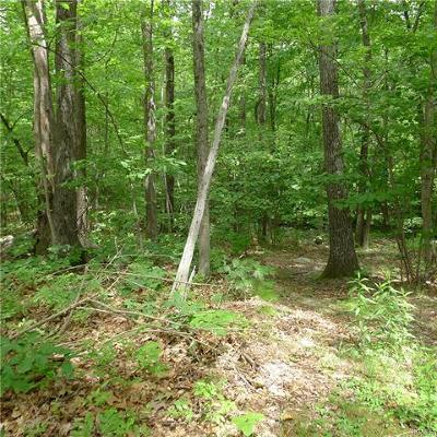 Dutchess County, Orange County, Sullivan County, Ulster County Residential Lots & Land For Sale: 39 Oak Hill Road