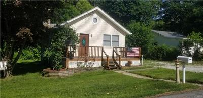 Putnam County Single Family Home For Sale: 17 Topland Road