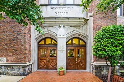 White Plains Condo/Townhouse For Sale: 65 McKinley Avenue #C3-5