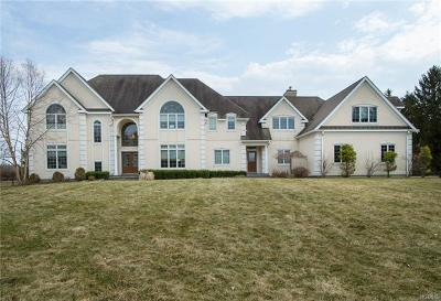 Lagrangeville Single Family Home For Sale: 18 Trinity Way