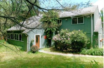 Dutchess County Single Family Home For Sale: 210 Martin Road
