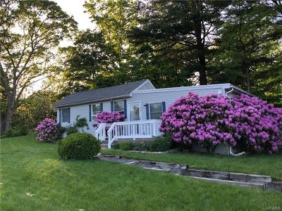 Putnam County Single Family Home For Sale: 243 Brook Road