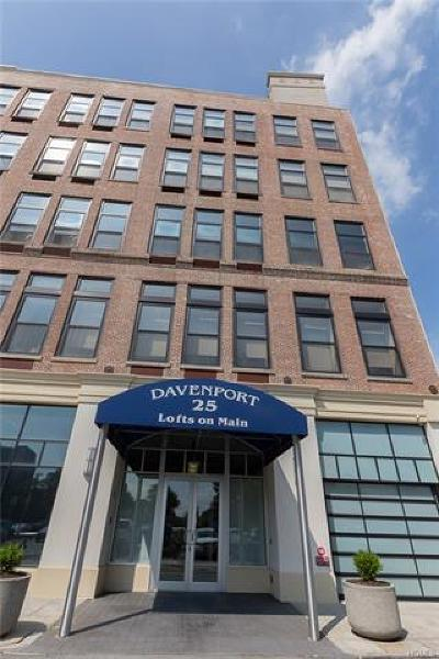 New Rochelle Rental For Rent: 25 Leroy Place #313