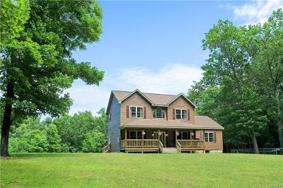 Wurtsboro Single Family Home For Sale: 36 Pine Kill Road