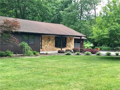 Dutchess County Single Family Home For Sale: 20 Hamilton Road