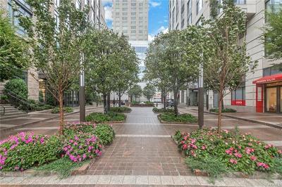 White Plains Rental For Rent: 10 City Place #12D