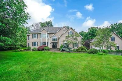 Dutchess County Single Family Home For Sale: 15 Bray Farm Lane