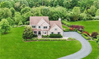 Dutchess County Single Family Home For Sale: 47 Victoria Drive
