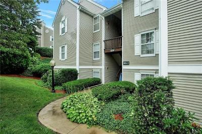New Windsor Condo/Townhouse For Sale: 1016 Washington Green