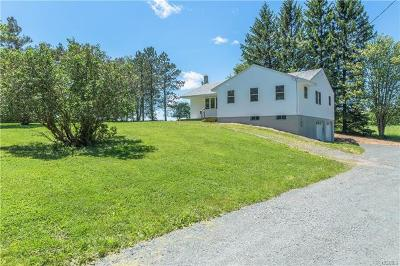 Liberty NY Single Family Home For Sale: $199,000