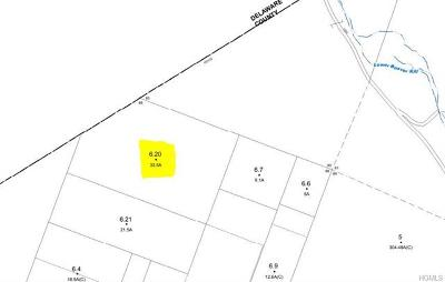 Roscoe NY Residential Lots & Land For Sale: $65,000