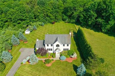 Dover Plains Single Family Home For Sale: 17 Drovers Lane