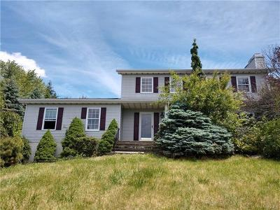 Dutchess County Single Family Home For Sale: 12 Robin Lane