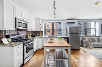 New York Condo/Townhouse For Sale: 133 Essex Street #302