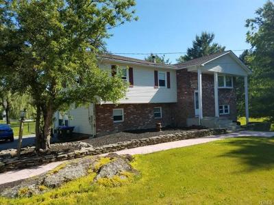 Washingtonville Single Family Home For Sale: 22 Horton Road