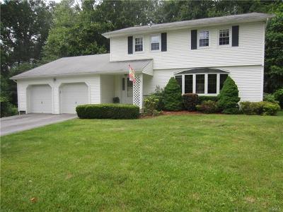 Dutchess County Single Family Home For Sale: 17 Surrey Lane
