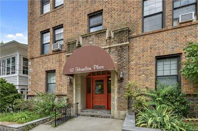Westchester County Co-Operative For Sale: 37 Hamilton Place #1A
