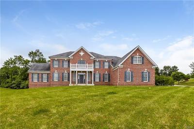 Dutchess County Single Family Home For Sale: 126 Shamrock Hills Drive