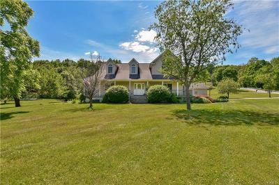 Dutchess County, Orange County, Sullivan County, Ulster County Single Family Home For Sale: 7 Hampton Hills Drive
