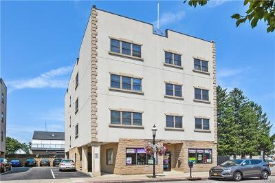 Westchester County Rental For Rent: 70 Spring Street #4C
