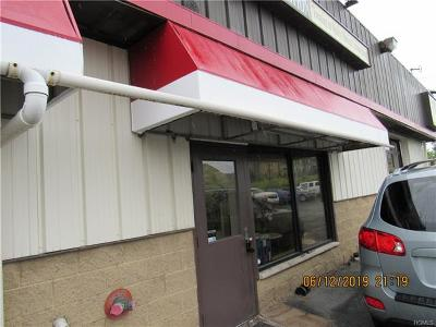 Middletown Commercial For Sale: 22 County Route 78