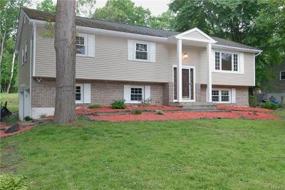 Dutchess County Single Family Home For Sale: 36 Split Tree Drive