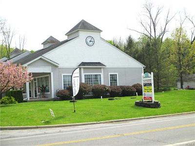 Warwick Commercial For Sale: 311 State Route 94 South