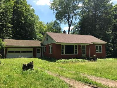 Single Family Home For Sale: 178 County Road 94