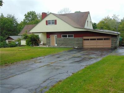 Mountain Dale NY Single Family Home For Sale: $99,900