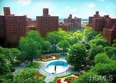 Bronx County Condo/Townhouse For Sale: 1550 Unionport Road #6E
